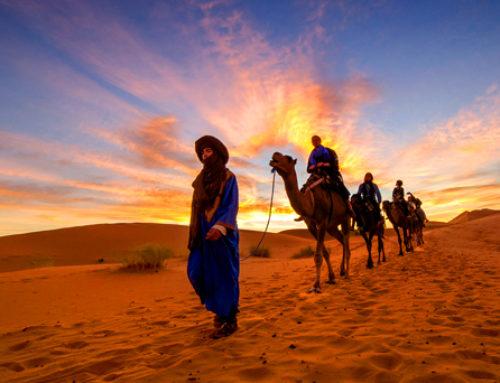 ¿Conoces lo mejor de Marrakech?